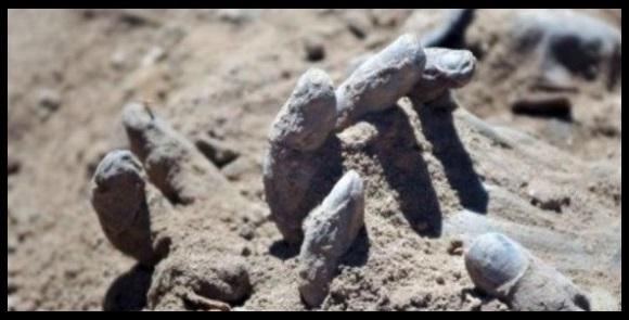 Altro orrore ISIS, seppelliti vivi chi fugge dalla battaglia