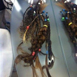 studentesse donano capelli a malate di tumore